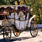 Ride alternatives for your Quince